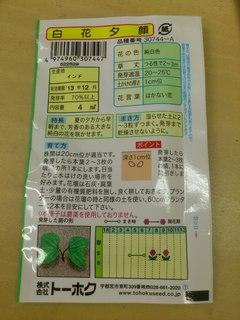 20130617�A夕顔の種(裏).JPG