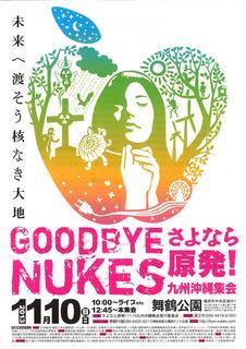 さよなら原発九州沖縄集会20131110_01.jpg