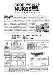 さよなら原発九州沖縄集会20131110_02.jpg