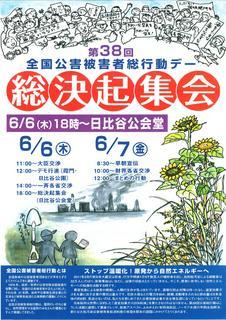公害被害者総行動デー20130606チラシ_01.jpg