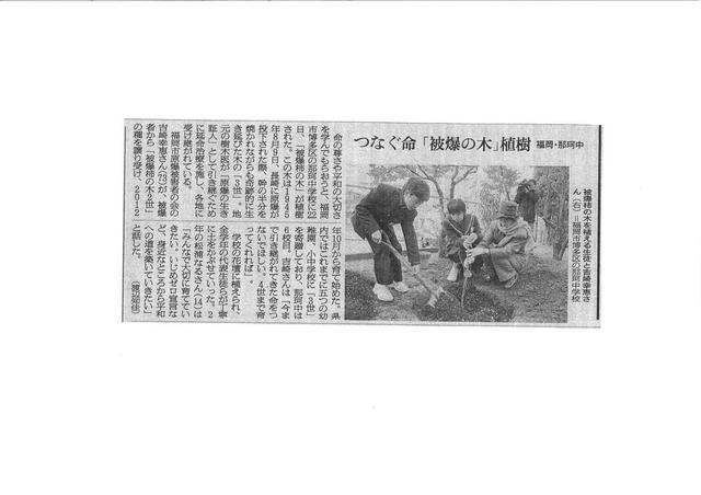 吉崎さん植樹新聞記事 朝日14.1.29_01.jpg